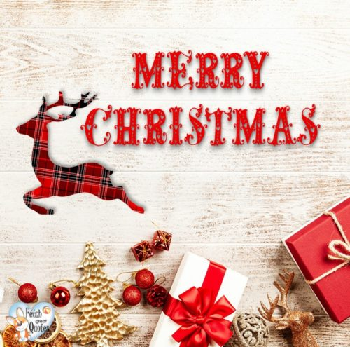 Rustic Merry Christmas photo, red Merry Christmas photo