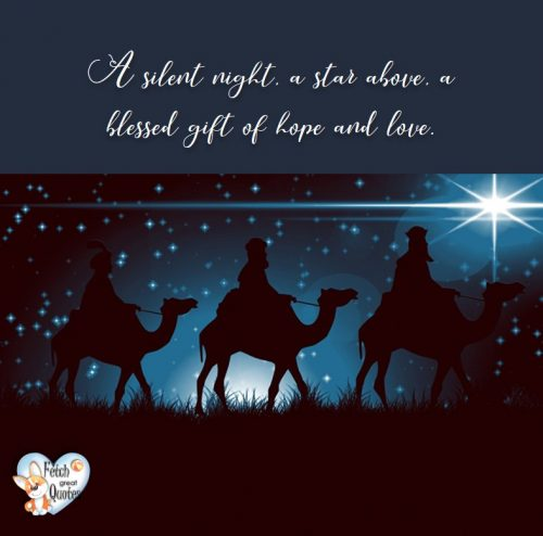 3 kings photo, Three kings photo, three wise men photo, Christmas photo, Christmas season photo, blue Christmas photo, A Silent night, a star above a blessed gift of hope and love photo