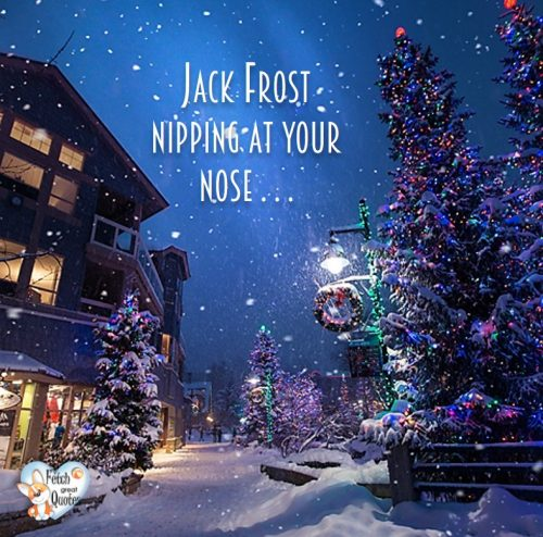 Christmas season photo, Blue Christmas photo, Jack frost nipping at your nose. Christmas lights photo