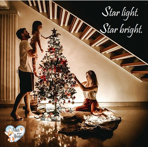 Family Christmas decorating, Christmas photo, star light star bright, Christmas tree,