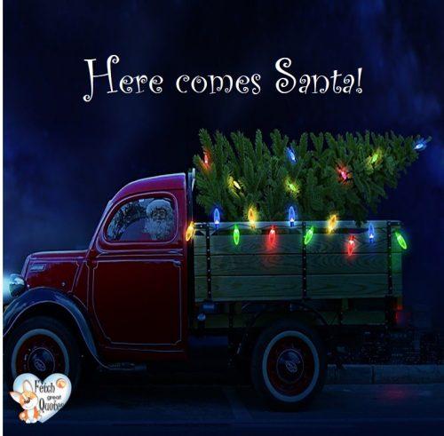 Here comes Santa photo, Christmas photo, Santa in truck, Christmas tree photo