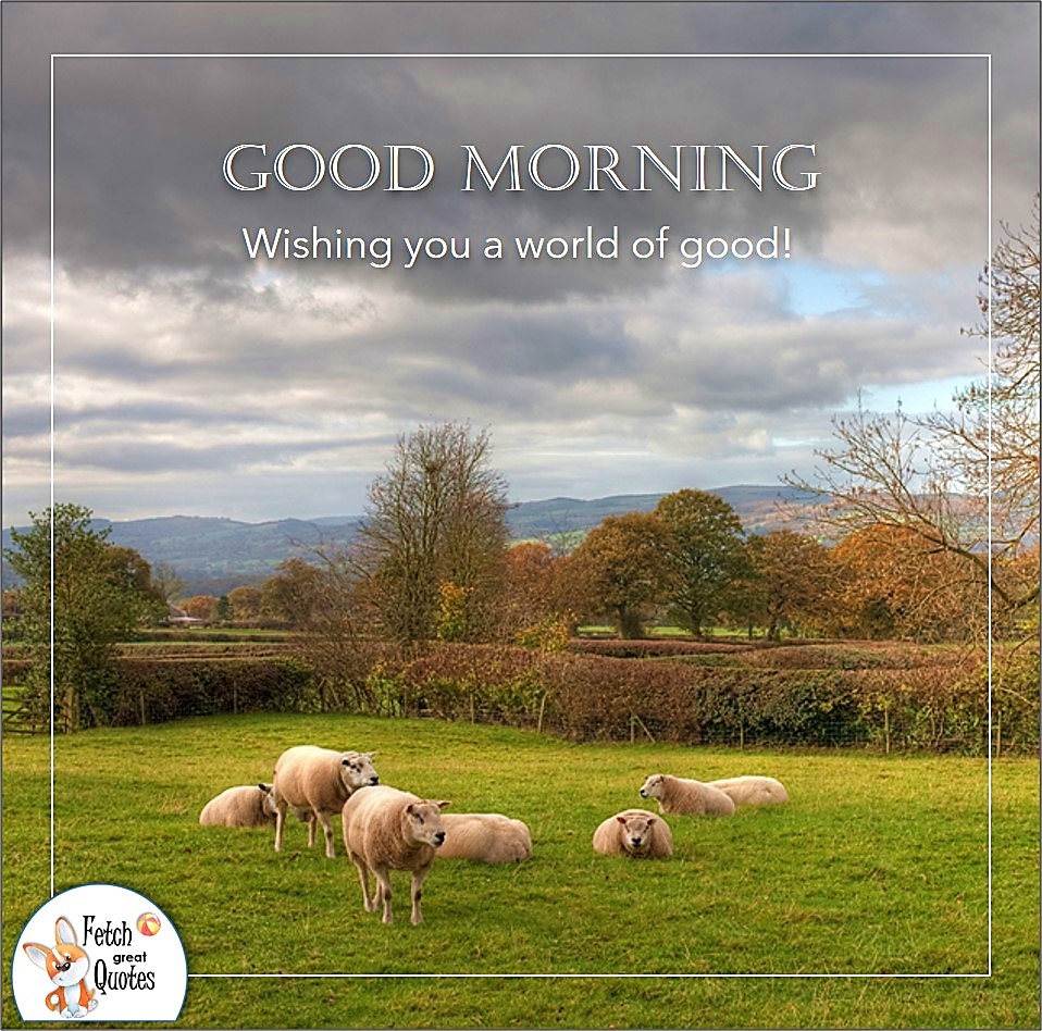 Wishing you a world of good!, sheep ranch, sunrise, grassy pasture, big sky, Country Morning, Good Morning, Country Good Morning, sunny morning, , good morning blessings, Country blessing, Good morning wishes, free country good morning photos, countryside photos,country girl morning, Country blessing, American country, down country, American country