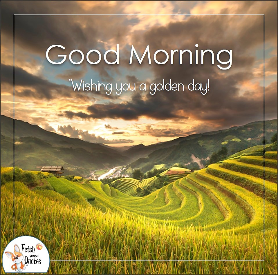 terraced fields, golden sky, Wishing you a golden day!, Country Morning, Good Morning, Country Good Morning, sunny morning, , good morning blessings, Country blessing, Good morning wishes, free country good morning photos, countryside photos,country girl morning, Country blessing, American country, down country, American country, cloudy sky