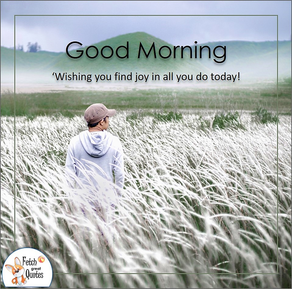 Wishing you find joy in all you do today!, wheat filed, farmer, farm life, Country Morning, Good Morning, Country Good Morning, sunny morning, , good morning blessings, Country blessing, Good morning wishes, free country good morning photos, countryside photos,country girl morning, Country blessing, American country, down country, American country
