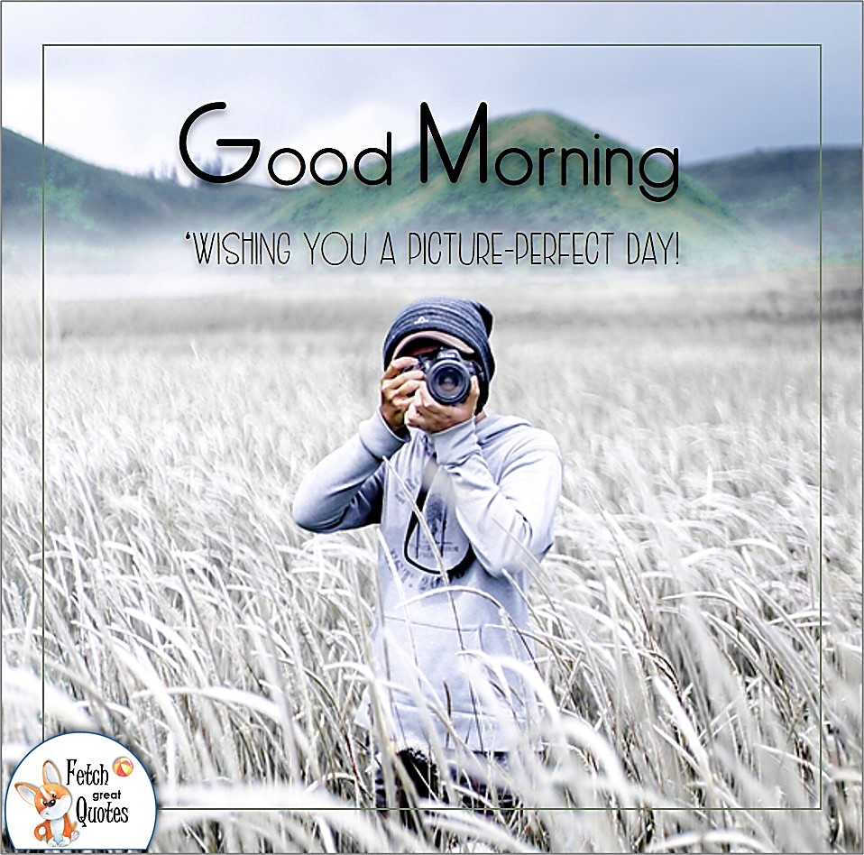Wishing you a picture-perfect day!, photographer, out in the field, white and blue, Country Morning, Good Morning, Country Good Morning, sunny morning, , good morning blessings, Country blessing, Good morning wishes, free country good morning photos, countryside photos,country girl morning, Country blessing, American country, down country, American country