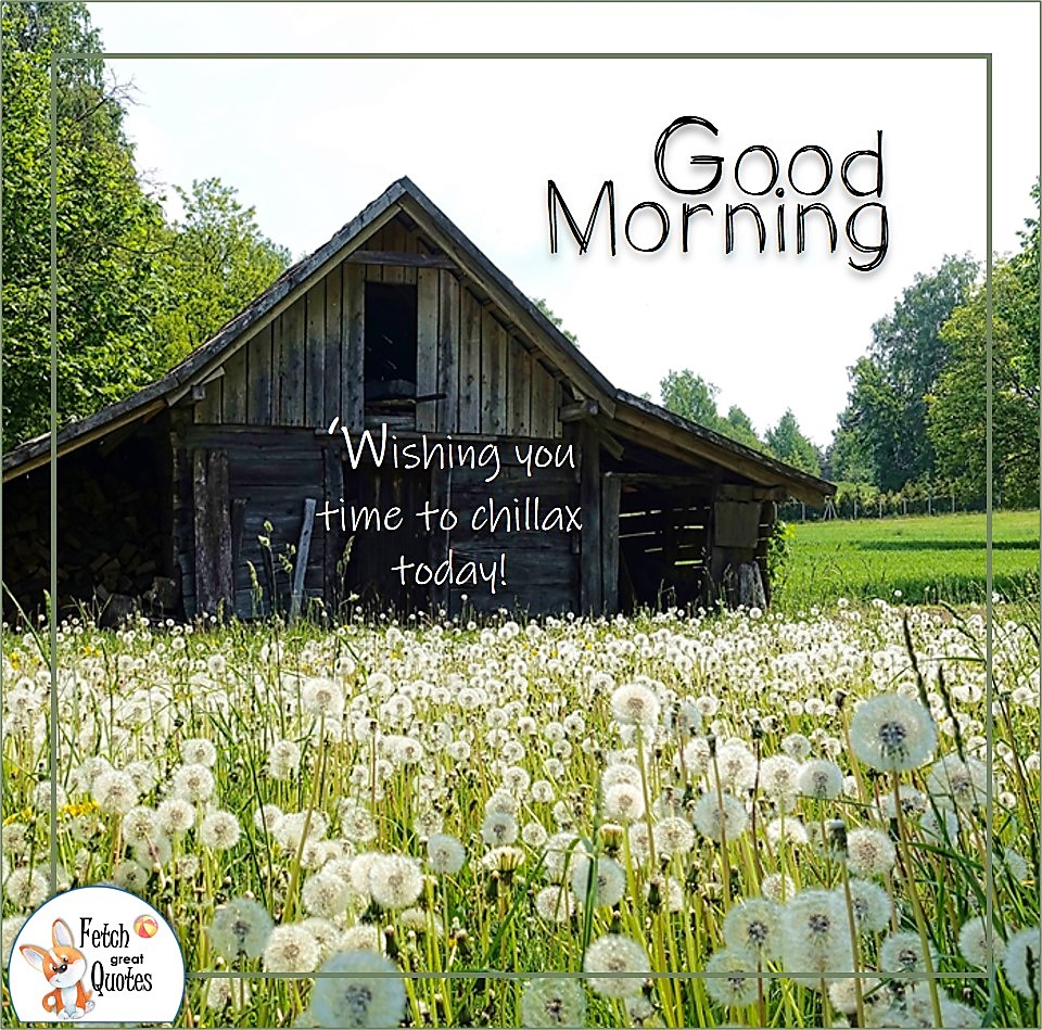 Wishing you time to chillax today!, old barn, dandelion field, make a wish, Country Morning, Good Morning, Country Good Morning, sunny morning, , good morning blessings, Country blessing, Good morning wishes, free country good morning photos, countryside photos,country girl morning, Country blessing, American country, down country, American country