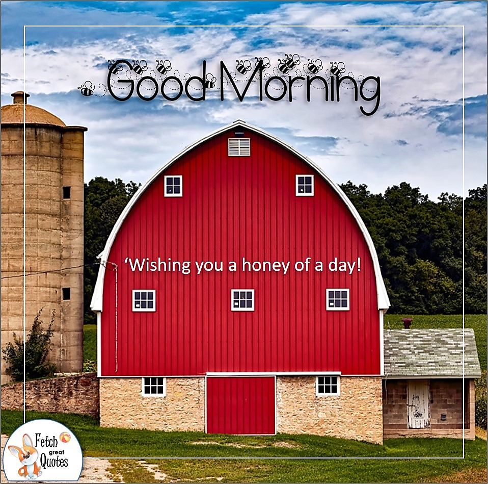 big red barn, Wishing you a honey of a day, bumble bees, Country Morning, Good Morning, Country Good Morning, sunny morning, , good morning blessings, Country blessing, Good morning wishes, free country good morning photos, countryside photos,country girl morning, Country blessing, American country, down country, American country
