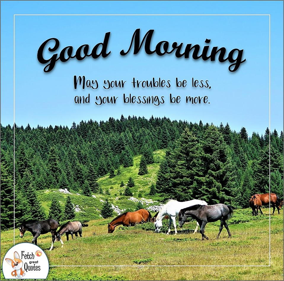 wild horses, ranch life, horse ranch, Country Morning, Good Morning, Country Good Morning, sunny morning, , good morning blessings, Country blessing, Good morning wishes, free country good morning photos, countryside photos,country girl morning, Country blessing, American country, down country, American country