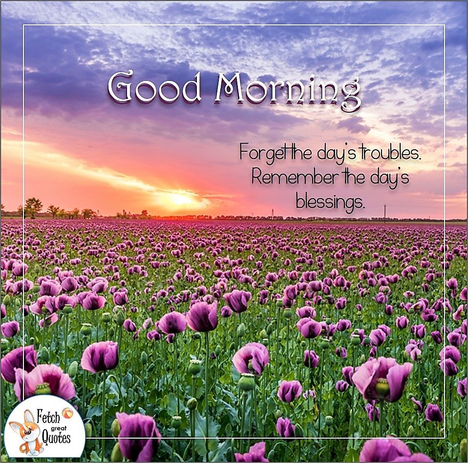 purple flowers, sunrise, purple landscape, purple sky, Forget the day's troubles. Remember the day's blessings, Country Morning, Good Morning, Country Good Morning, sunny morning, , good morning blessings, Country blessing, Good morning wishes, free country good morning photos, countryside photos