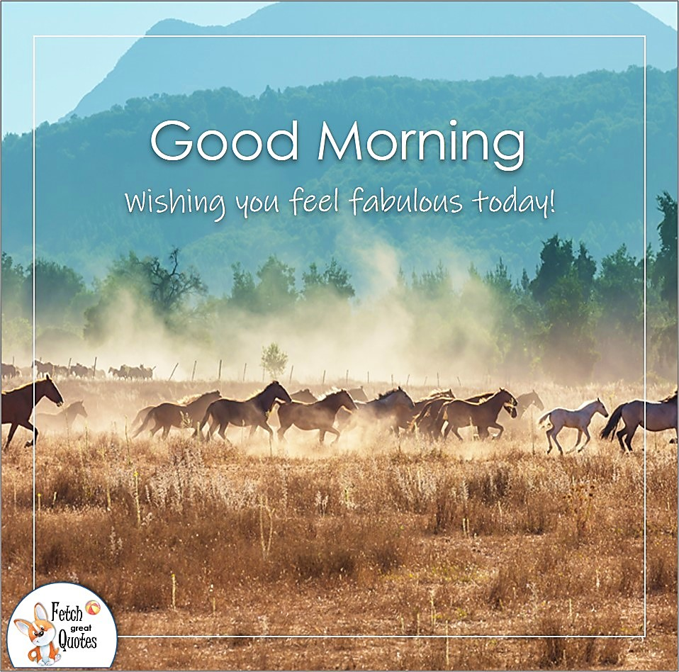 Wishing you feel fabulous today!, sunrise, horse ranch, wild horses, blue sky, big sky country, ranch life, cowboy life, Country Morning, Good Morning, Country Good Morning, sunny morning, , good morning blessings, Country blessing, Good morning wishes, free country good morning photos, countryside photos,country girl morning, Country blessing, American country, down country, American country