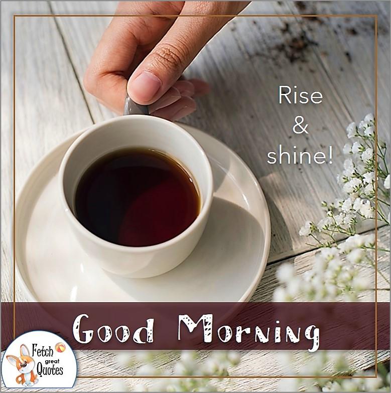 coffee good morning photo, coffee cup and saucer, modern good morning photo, Rise & shine photo