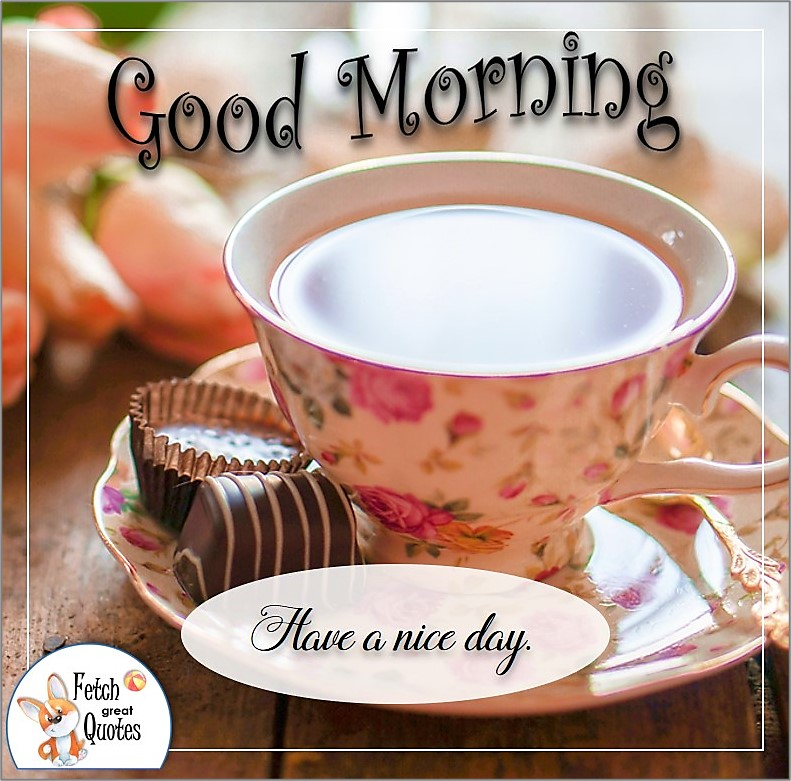 pink flower tea cup, pink flower coffee cup, coffee and chocolates good morning photo, Have a nice day photo