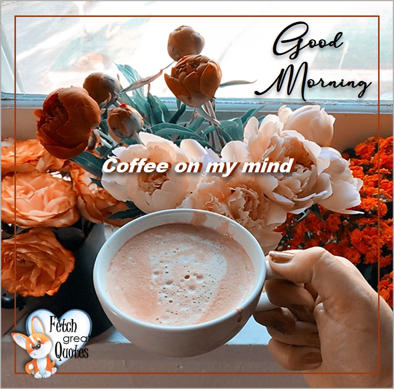 Coffee on my mind, Good Morning, Good Morning photos, Good Morning Coffee photos, Coffee photos, Funny Coffee photos, humorous coffee photos, funny coffee sayings, coffee quotes, coffee lover, Coffee themed photos, coffee themed good morning photos