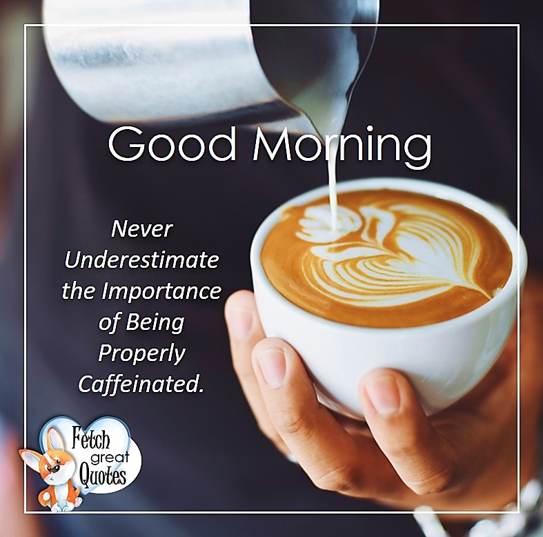 Good morning. Never underestimate the importance of Being Properly Caffeinated, Good Morning photos, Good Morning Coffee photos, Coffee photos, Funny Coffee photos, humorous coffee photos, funny coffee sayings, coffee quotes, coffee lover, Coffee themed photos, coffee themed good morning photos