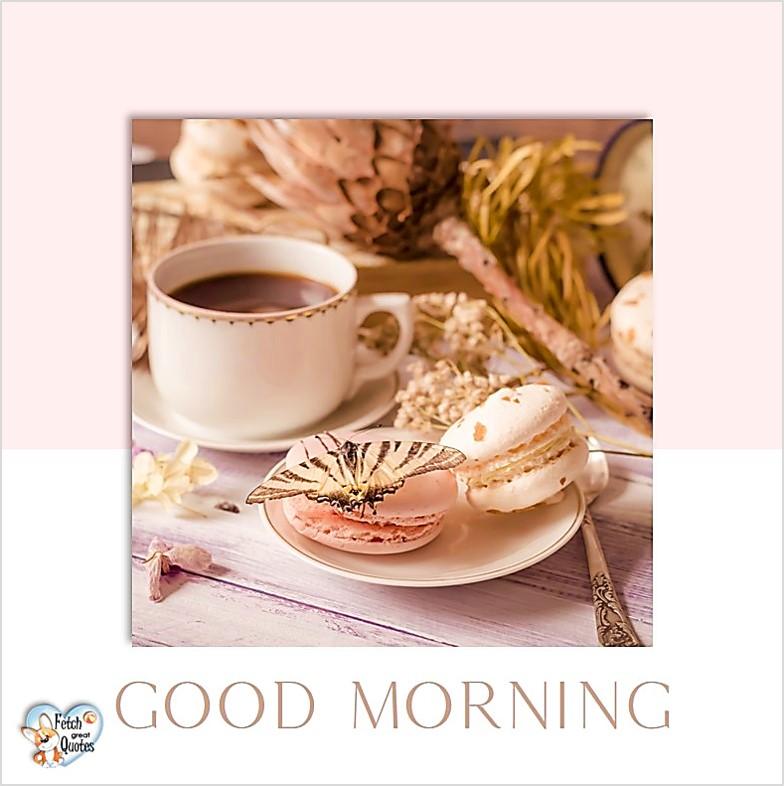 Good Morning photos, Good Morning Coffee photos, Coffee photos, Funny Coffee photos, humorous coffee photos, funny coffee sayings, coffee quotes, coffee lover, Coffee themed photos, coffee themed good morning photos