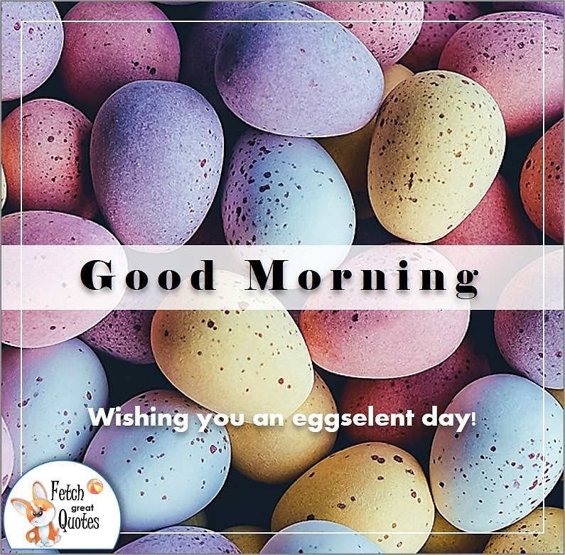 easter eggs, robin's eggs, good morning photo, Wishing you an eggselent day photo quote