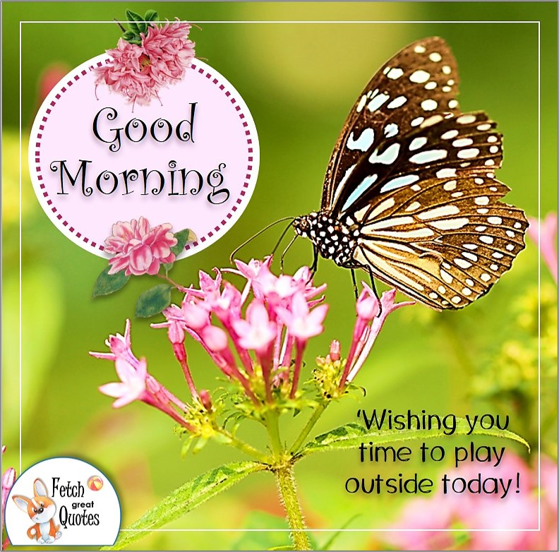 monarch butterfly good morning quote photo, pink flowers and butterfly, Wishing you time to play outside today quote photo