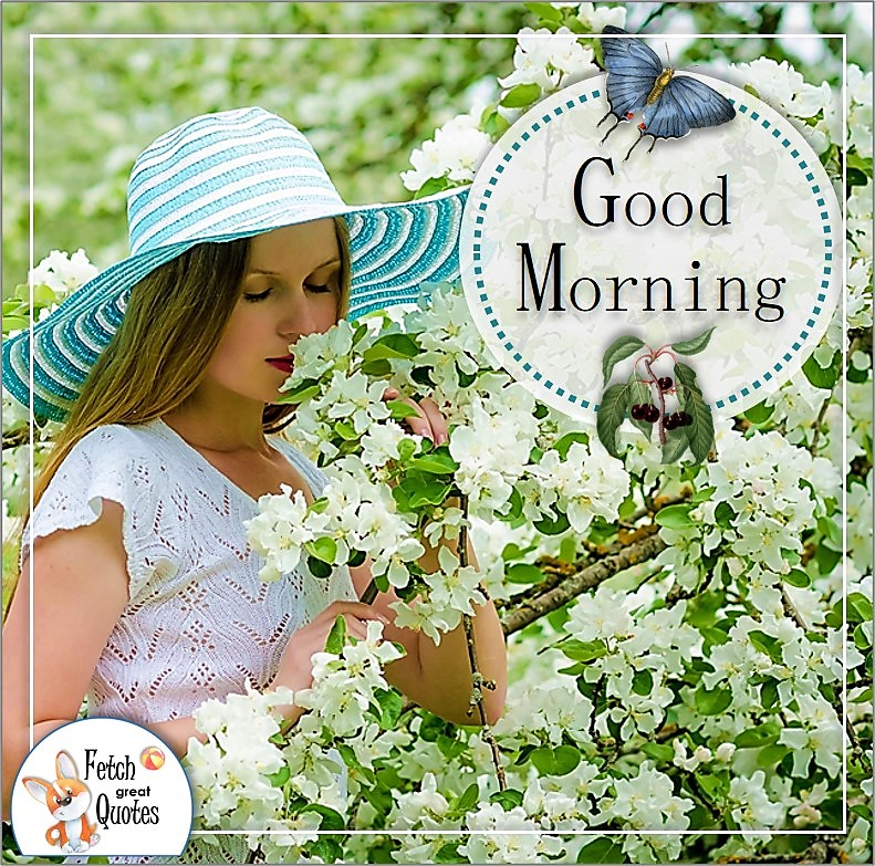 Spring blossoms girl good morning quote photo, white blossoms