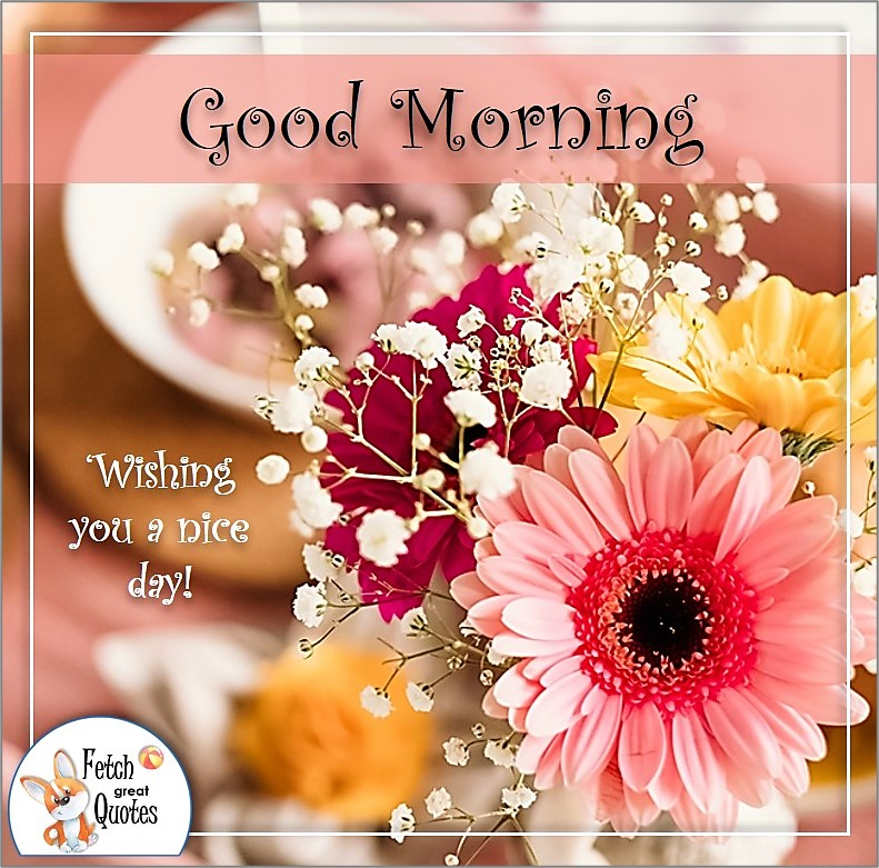 pink flower good morning photo, wishing you a nice day photo quote