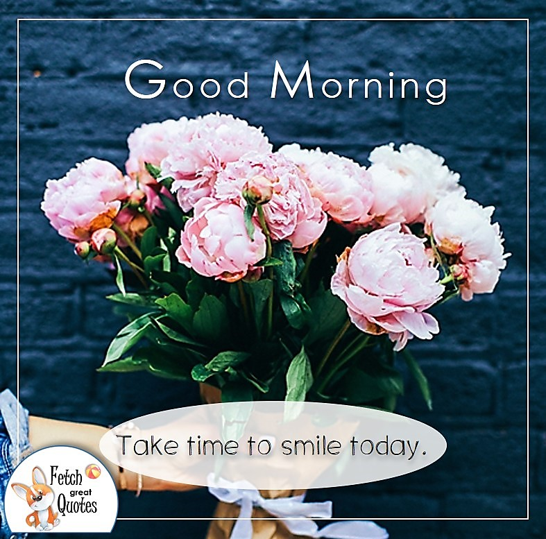 pink peonies good morning photo quote, take time to smile photo quote