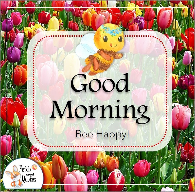 colorful tulips good morning photo, cute bumble bee, Bee Happy Quote photo