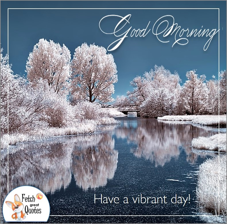 Winter Good Morning photo, snowy trees, snow scene, snow covered trees, winter good morning photo, Have a vibrant day!