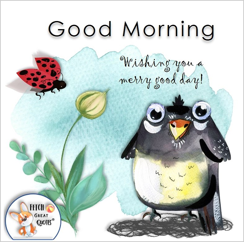 funny bird photo, cute bird photo, lady bug photo, Wishing you a merry good day, Whimsical Good Morning photos, cute good morning photo, good morning photos, cartoon good morning photos, humorous good morning photos, funny good morning photos