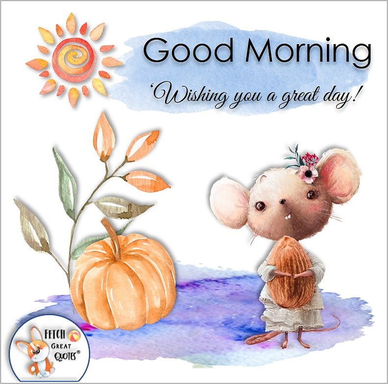 cute mouse photo, cute animal photo, Wishing you a great day, fall good morning photo, Whimsical Good Morning photos, cute good morning photo, good morning photos, cartoon good morning photos, humorous good morning photos, funny good morning photos