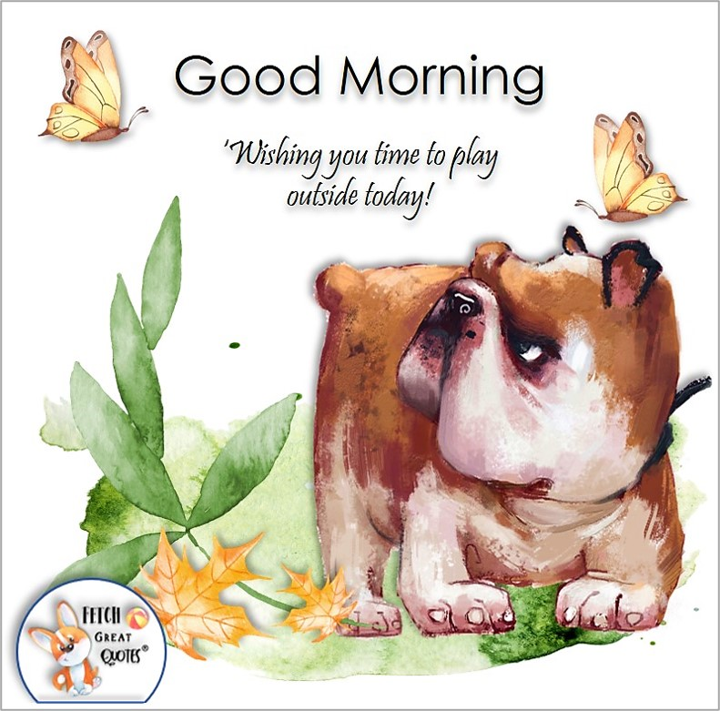 cute bull dog photo, funny bull dog, Wishing you time to play outside today! , Whimsical Good Morning photos, cute good morning photo, good morning photos, cartoon good morning photos, humorous good morning photos, funny good morning photos