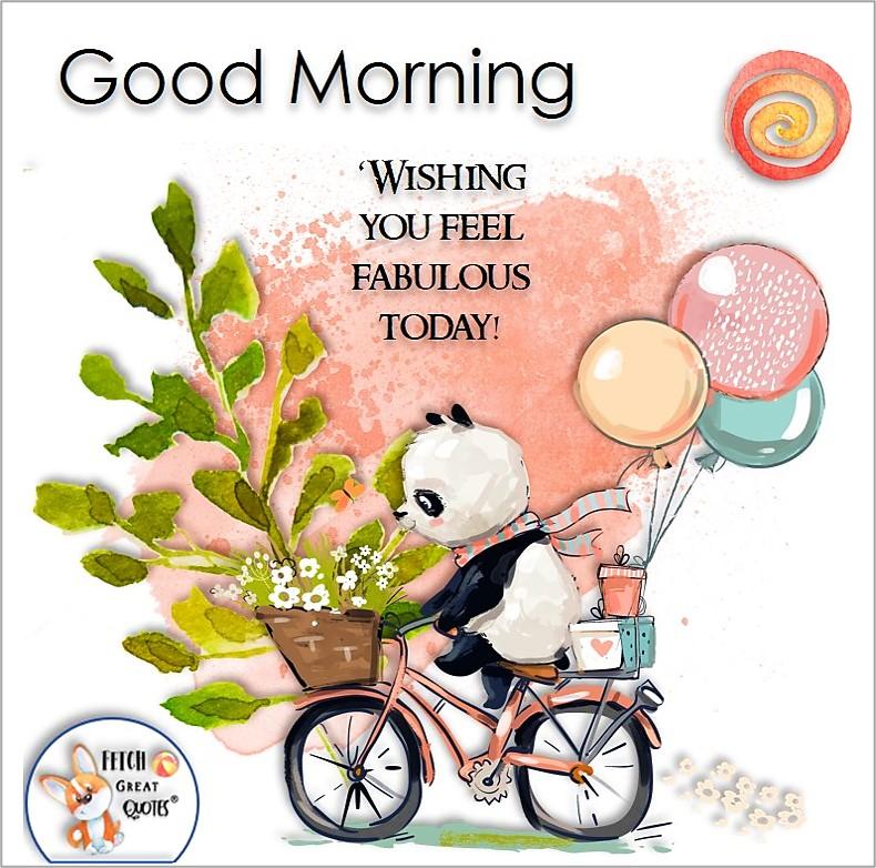 cute panda bear, panda on a bike, Wishing you feel fabulous today, Whimsical Good Morning photos, cute good morning photo, good morning photos, cartoon good morning photos, humorous good morning photos, funny good morning photos