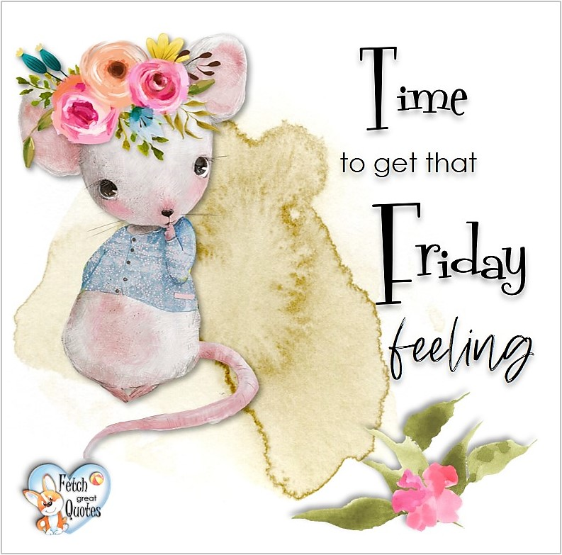 Free Friday Quotes, Happy Friday Photos, Friday photos, Fun Friday quotes, fun Friday photos, Time to get that Friday feeling