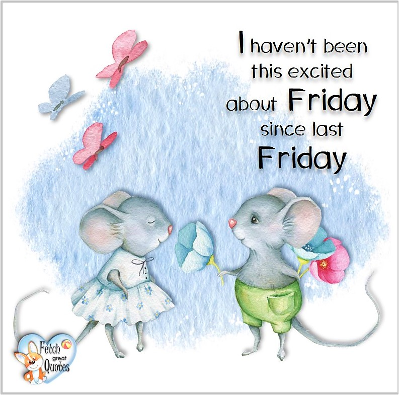 Free Friday Quotes, Happy Friday Photos, Friday photos, Fun Friday quotes, fun Friday photos, I haven't been this excited aout Friday since last Friday