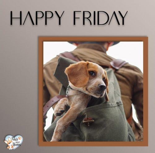 Dog Happy Friday photo