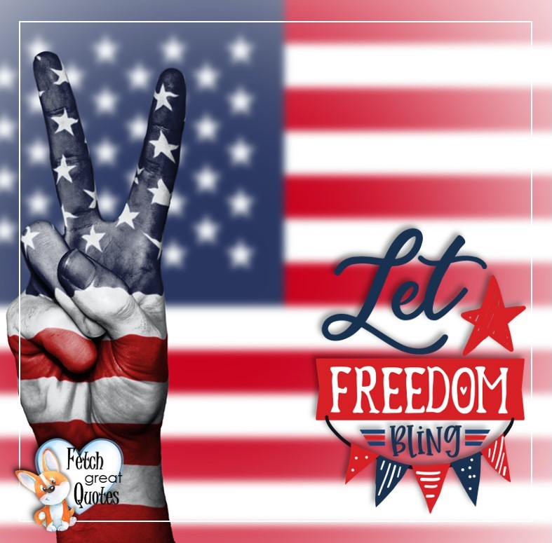 Let Freedom Bling, 4th of July, celebrating the 4th of July, Happy 4th of July, Happy Independence Day, Fireworks photos, American Dream, beautiful 4th of July photos, Celebrate Independence Day