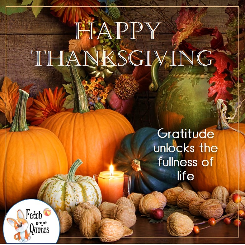Thankful harvest, Gratitude unlocks the fullness of life, talking turkey, celebrate giving thanks, , gratitude, abundance in our lives, happy Thanksgiving, give thanks, beautiful Happy Thanksgiving photos, Happy Thanksgiving, heartwarming Thanksgiving photos