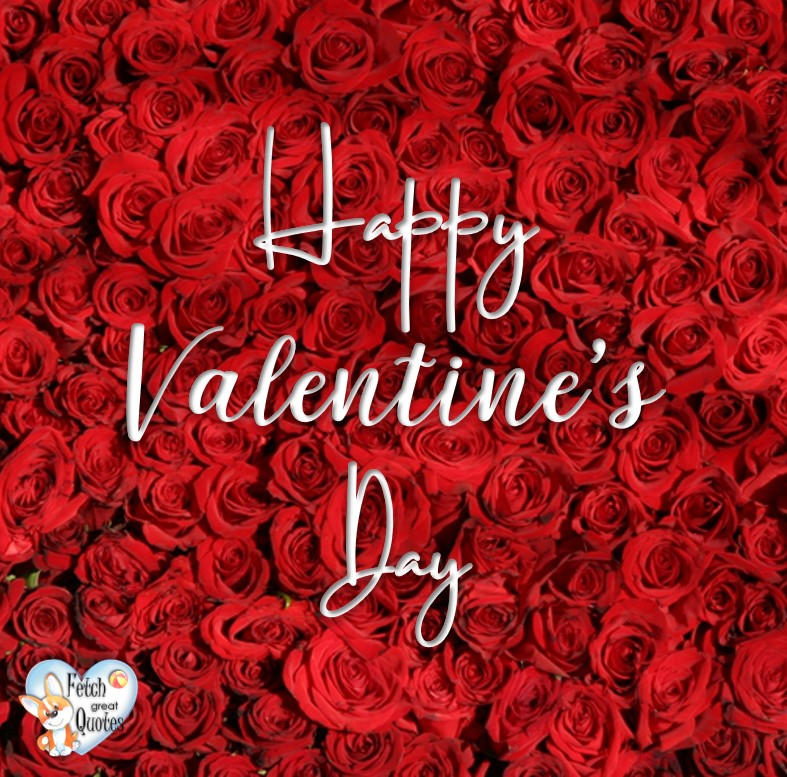 Valentine Roses, Happy Valentine's Day, Valentine's Day, Valentine greetings, holiday greetings, Valentine's day wishes, cute Valentine's Day photos
