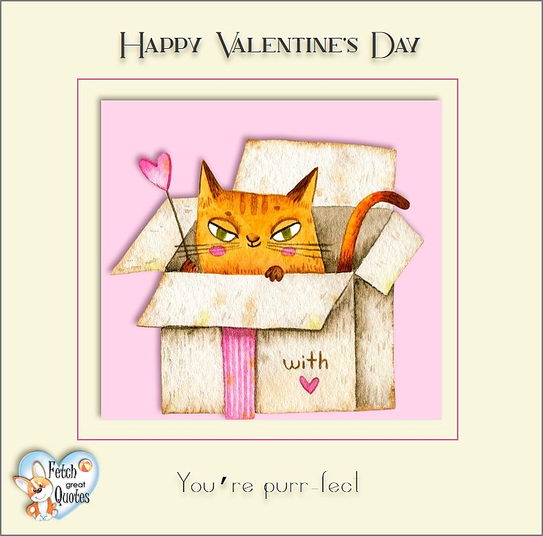 You're purr-fect , Happy Valentine's Day, Valentine's Day, Valentine greetings, holiday greetings, Valentine's day wishes, cute Valentine's Day photos