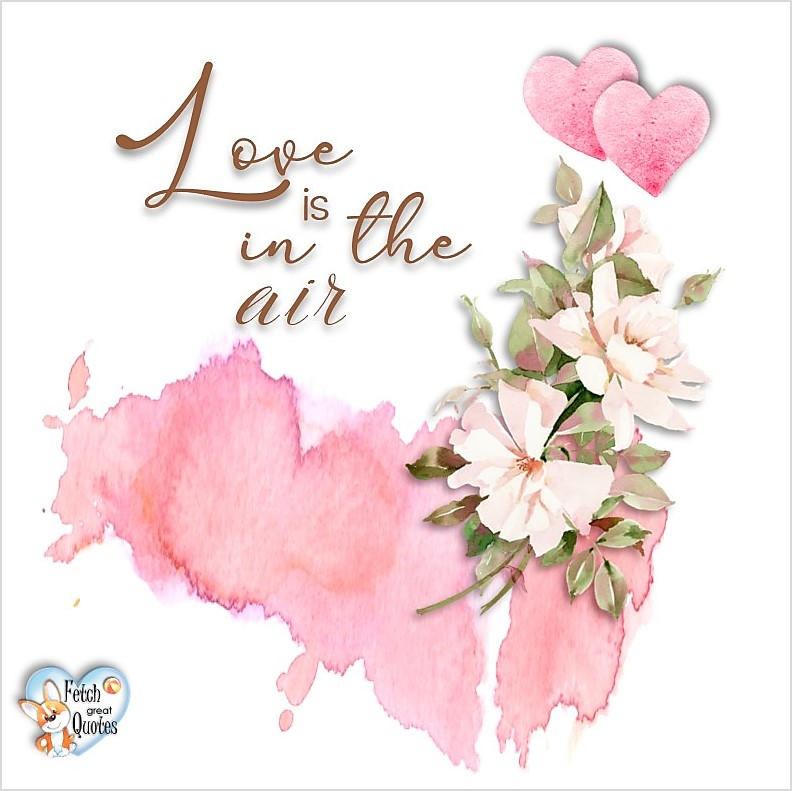 Love is in the air, Happy Valentine's Day, Valentine's Day, Valentine greetings, holiday greetings, Valentine's day wishes, cute Valentine's Day photos