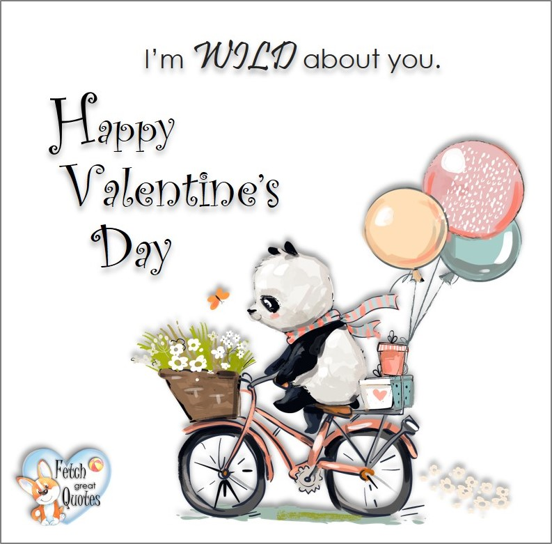 I'm wild about you, Happy Valentine's Day, Valentine's Day, Valentine greetings, holiday greetings, Valentine's day wishes, cute Valentine's Day photos