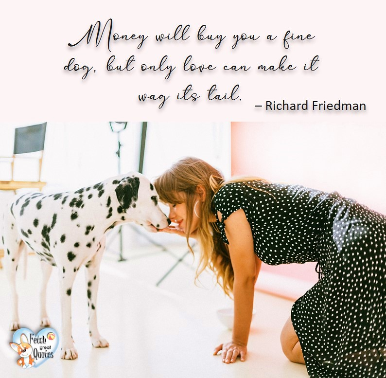 Money will buy you a fine dog, but only love can make it wag it's tail. - Richard Freidman, Humorous Money and Finance quotes, funny money quotes, funny quotes about money, Money quotes, Favorite Money and finance quotes, financial wisdom, how to talk about financial advice, motivational money quotes, inspire investing and saving, change attitudes towards money, interest in personal finance, financial advice, Favorite Money and finance quotes, financial wisdom, motivational money quotes, Investment Managers, Financial advisors, Insurance Brokers, Credit Coaches