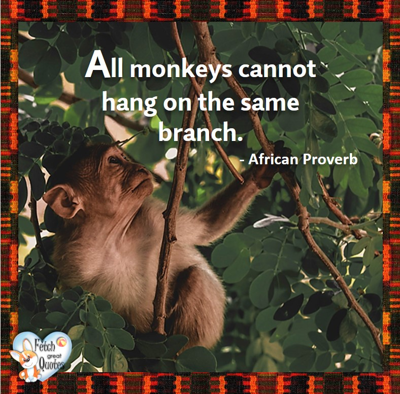 African Proverb, richly illustrated African Proverbs, beautiful African proverb, ancient wisdom, inspirational photo quote, African proverb photo quote, motivational quote, motivational photo quote, All monkeys cannot hang from the same branch. - African Proverb