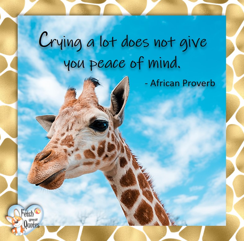 Crying a lot does not you peace of mind. - African Proverb, African Proverb, richly illustrated African Proverbs, beautiful African proverb, ancient wisdom, inspirational photo quote, African proverb photo quote, motivational quote, motivational photo quote