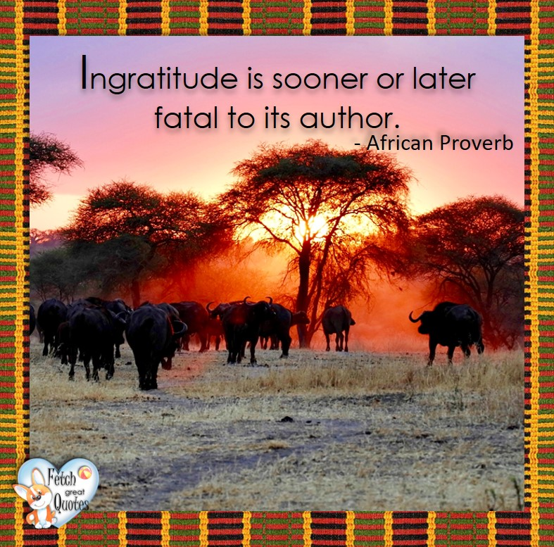 African Proverb, richly illustrated African Proverbs, beautiful African proverb, ancient wisdom, inspirational photo quote, African proverb photo quote, motivational quote, motivational photo quote, Ingratitude is sooner or later fatal to its author. - African Proverb