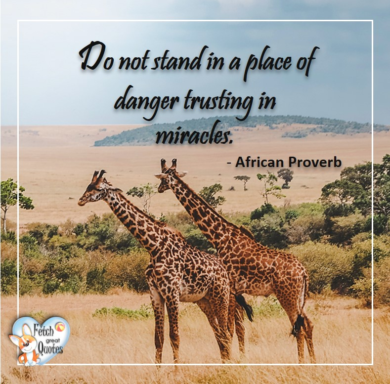 African Proverb, richly illustrated African Proverbs, beautiful African proverb, ancient wisdom, inspirational photo quote, African proverb photo quote, motivational quote, motivational photo quote, Do not stand in a place of danger trusting miracles. - African Proverb