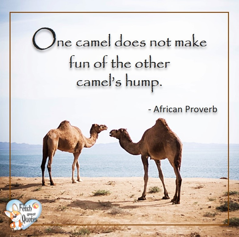 One camel does not make fun of the other's hump. - African Proverb, African Proverb, richly illustrated African Proverbs, beautiful African proverb, ancient wisdom, inspirational photo quote, African proverb photo quote, motivational quote, motivational photo quote