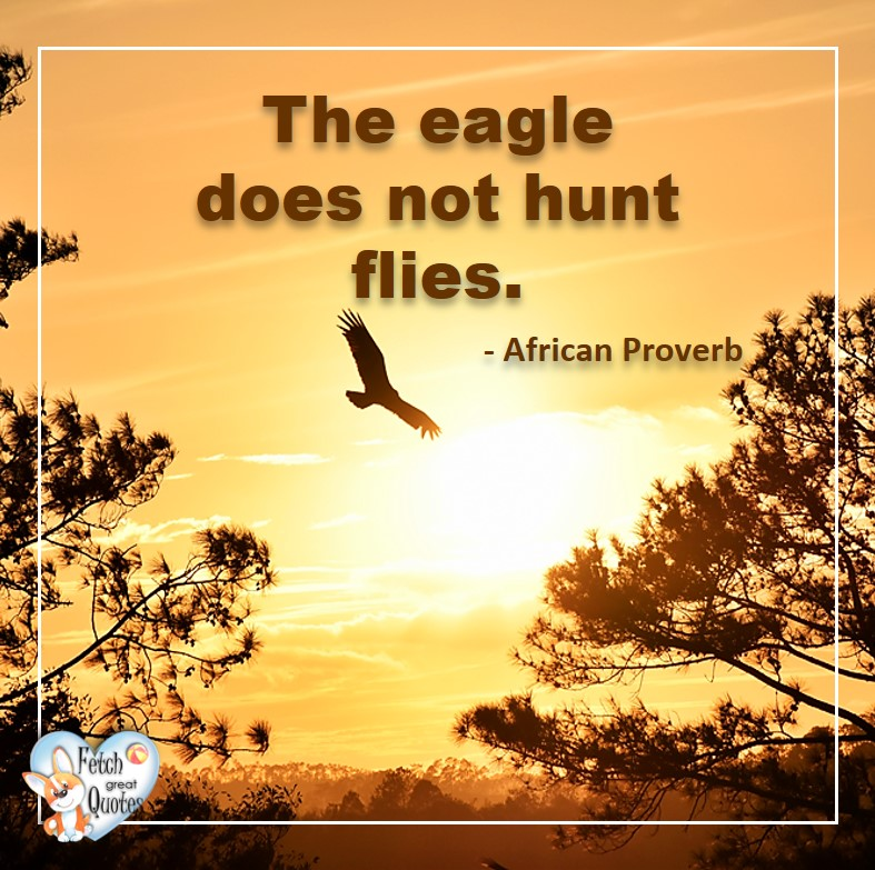 The eagle does not hunt flies. - African Proverb, African Proverb, richly illustrated African Proverbs, beautiful African proverb, ancient wisdom, inspirational photo quote, African proverb photo quote, motivational quote, motivational photo quote