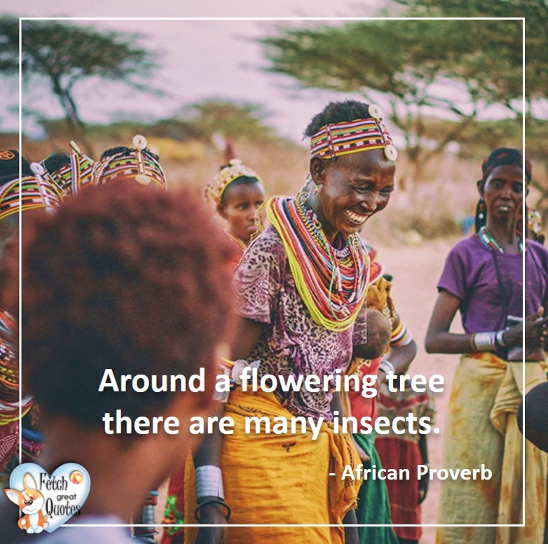 Around a flowering tree there are many insects, African Proverb, richly illustrated African Proverbs, beautiful African proverb, ancient wisdom, inspirational photo quote, African proverb photo quote, motivational quote, motivational photo quote