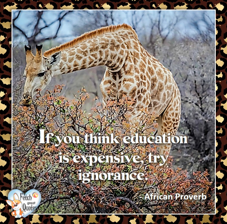 African Proverb, richly illustrated African Proverbs, beautiful African proverb, ancient wisdom, inspirational photo quote, African proverb photo quote, motivational quote, motivational photo quote, If you think education is expensive, try ignorance. - African Proverb