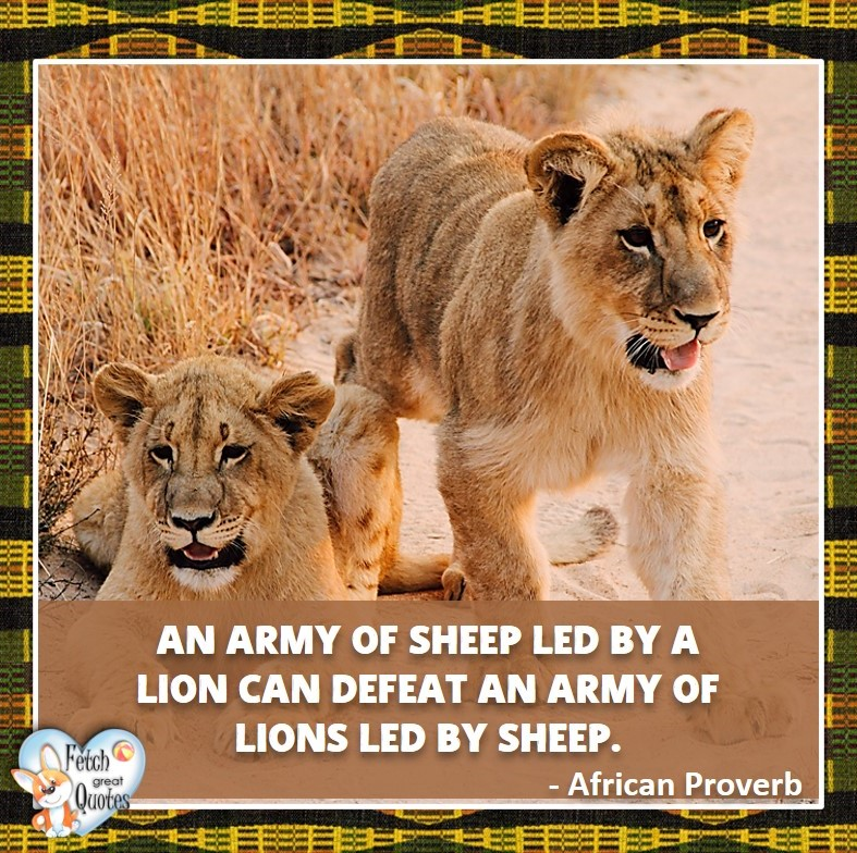 An army of sheep led by a lion can defeat an army of loins led by sheep. - African Proverb, African Proverb, richly illustrated African Proverbs, beautiful African proverb, ancient wisdom, inspirational photo quote, African proverb photo quote, motivational quote, motivational photo quote