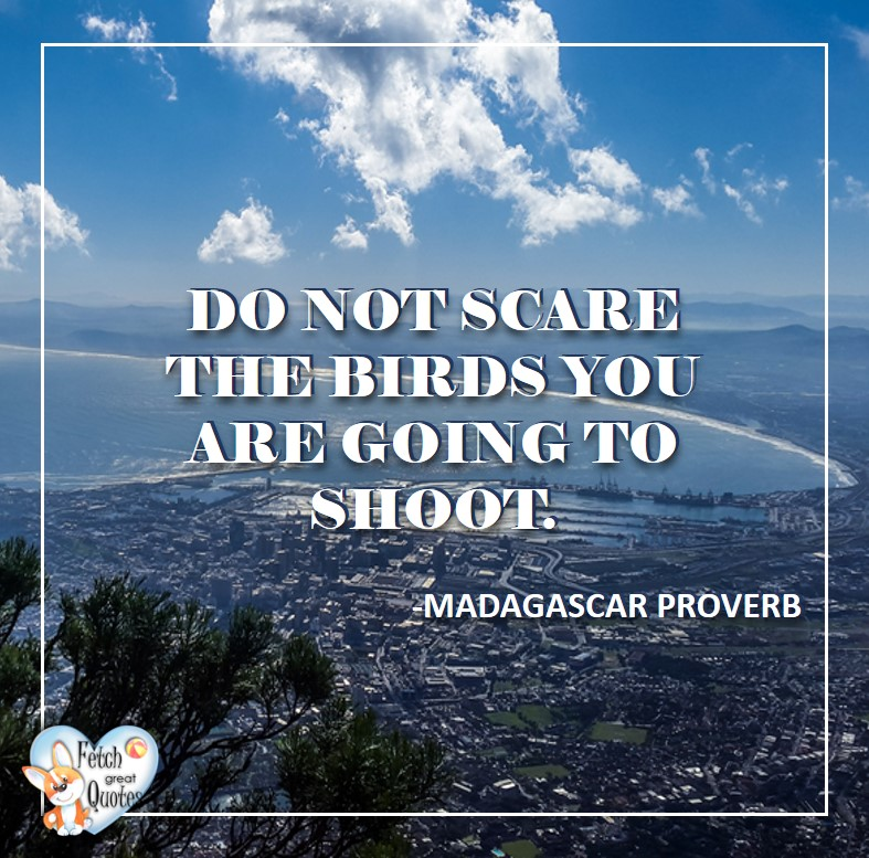 African Proverb, richly illustrated African Proverbs, beautiful African proverb, ancient wisdom, inspirational photo quote, African proverb photo quote, motivational quote, motivational photo quote, Do not scare the birds you are going to shoot. - African Proverb